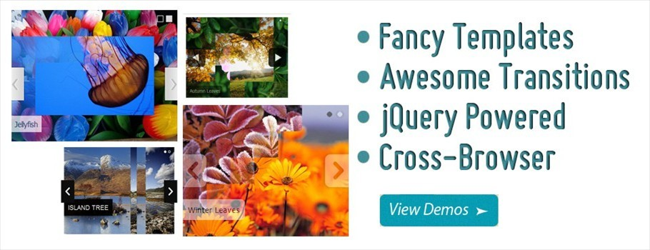 slide photo jquery